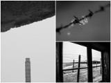 Majdanek w obiektywie. Zwycięskie zdjęcia wybrane. Te fotografie poruszyły jury. Zobacz!