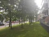 Kraków. Droga pod oknami mieszkańców, w miejsce drzew i parkingu. Protestujący piszą do prezydenta Majchrowskiego