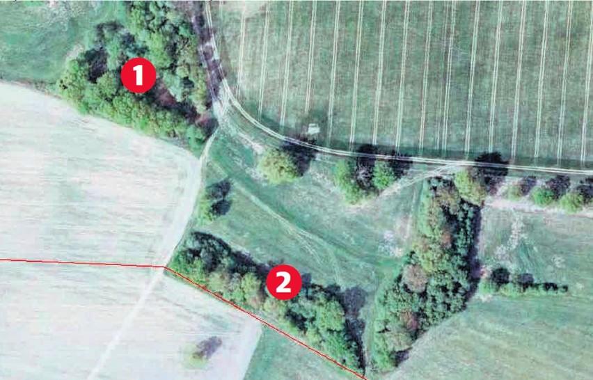 Pola w Rożnowie z lotu ptaka: 1 - to był półhektarowy las, który zniknął bez śladu. 2 - to są według urzędników gminy Wołczyn zakrzaczenia, które pozwolili wyciąć...