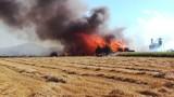 Pożar tartaku w Szybowicach. Prokuratura odmówiła wszczęcia śledztwa w sprawie hydrantu