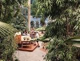 Egzotyczna dżungla u podnóża wieżowców. Olivia Garden zaprasza na ucztę dla zmysłów