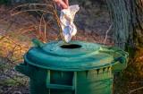Koronawirus. Śmieci w czasach koronawirusa - Jak bezpiecznie wyrzucić śmieci będąc na kwarantannie lub w izolacji domowej?