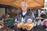 Ceny grzybów 2020. Grzyby w tym roku będą drogie. Ile kosztuje kilogram prawdziwków, podgrzybków, kurek?