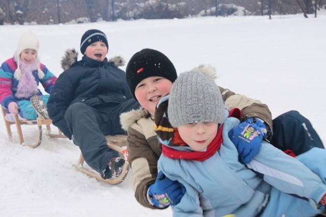 Jedną z atrakcji tegorocznych zimowych ferii będzie kulig  - przejażdżka saneczkami