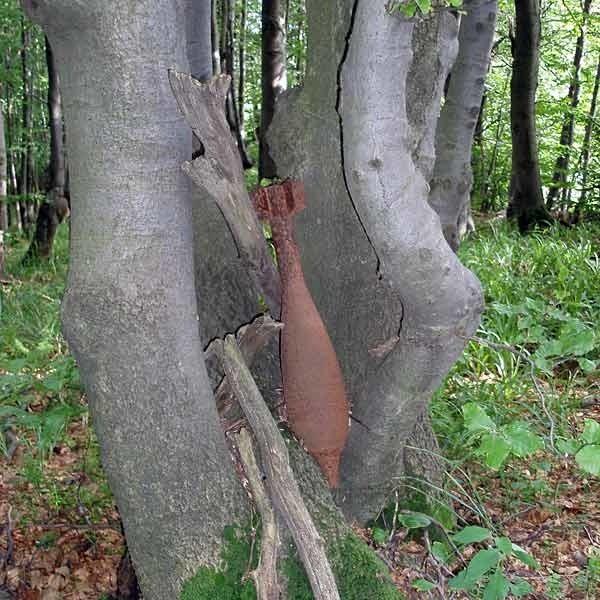 Pociski z drzew zostały już zabrane przez saperów. W przypadku natrafienia na niewybuchy nie wolno ich dotykać. Należy natychmiast zawiadomić policję.