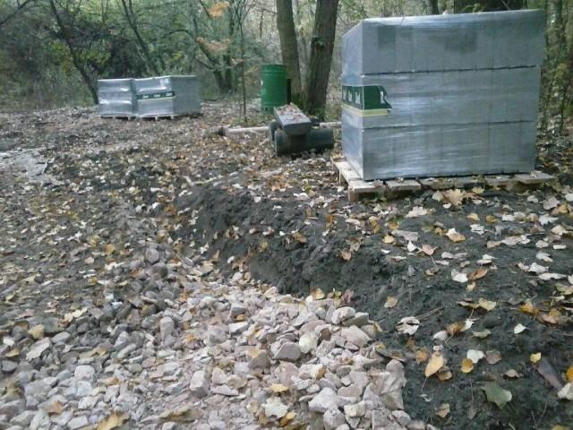 Tak aktualnie wygląda alejka w Lesie Borkowskim. Zdjęcie z zeszłego tygodnia, z 18 listopada