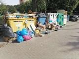 """Zielona Góra. Syf przy pergoli śmietnikowej na ul. Podgórnej? """"To sąsiedzi ciągle podrzucają nam śmieci!"""""""