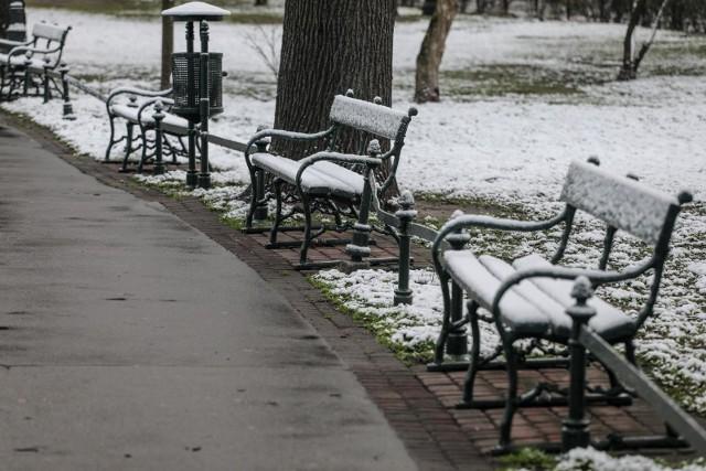 Jaka będzie zima 2020? Prognozy wieszczą mrozy