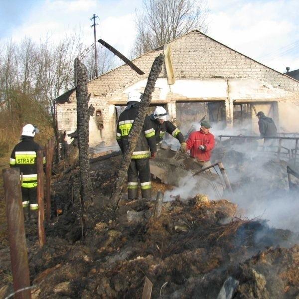 Trwa dogaszanie pożaru w Talusach