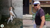 Złota Góra. Zabił psa, stanie przed sądem. Prokuratura Rejonowa w Ostrołęce skierowała do sądu akt oskarżenia w bulwersującej sprawie