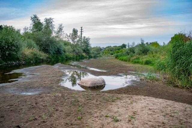 Poznań W Cybinie Nie Ma Już Praktycznie Wody Z Dopływu