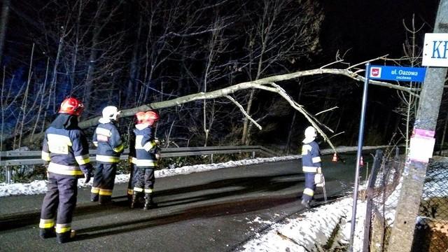 Drzewo spadło na linie telekomunikacyjne