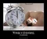 Zmiana czasu z zimowego na letni MEMY. Internauci żartują z przestawiania zegarków. Zmiana czasu najlepsze MEMY 2.04.2021
