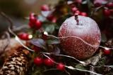 Świąteczne życzenia. Proste życzenia na Boże Narodzenie. Życzenia bożonarodzeniowe. Złóż życzenia najbliższym! 25.12.20