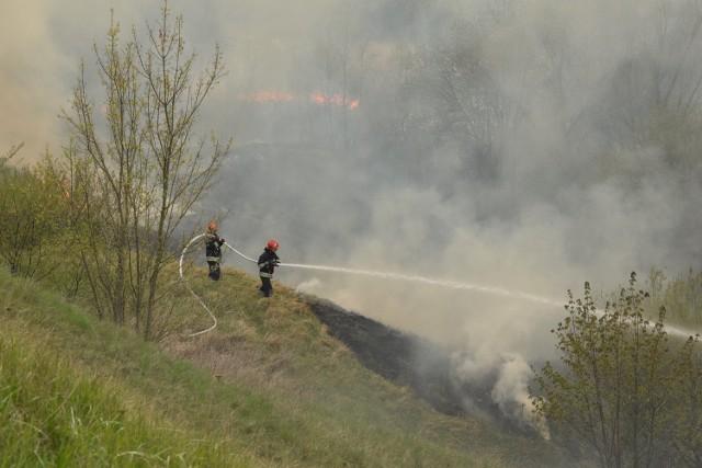 Przyczyna pożaru? Wiele wskazuje, że podpalenie.