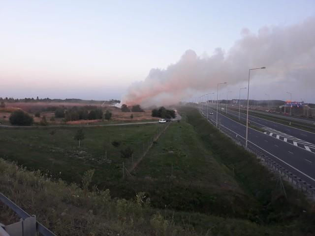 Pożar przy autostradzie A1 koło Łodzi.