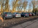 Kierowcy znów rozjeżdżają trawniki na Cytadeli. Jak temu zapobiec? Poznańska radna ma pomysł