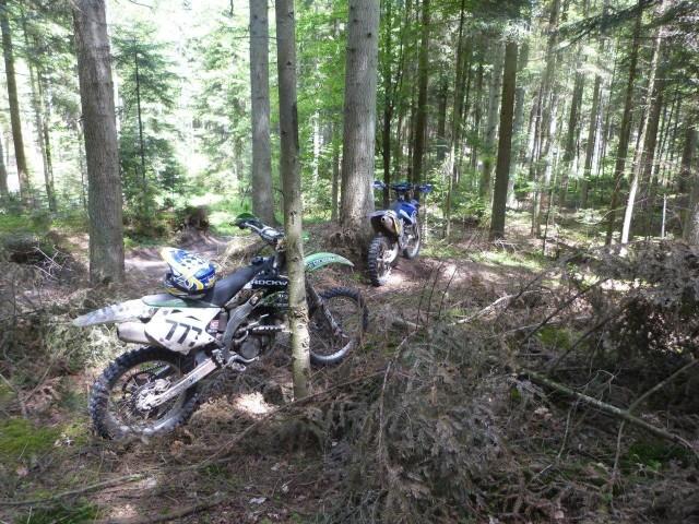 Nielegalna jazda quadami i motocyklami po lasach regionu radomskiego jest prawdziwą plagą.