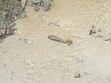 W rzece w Jabłonkach znaleziono bombę lotniczą
