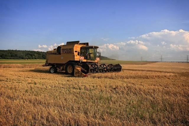 Rolnicy dyskutują o zakupie używanego kombajnu na ok. 40 hektarów