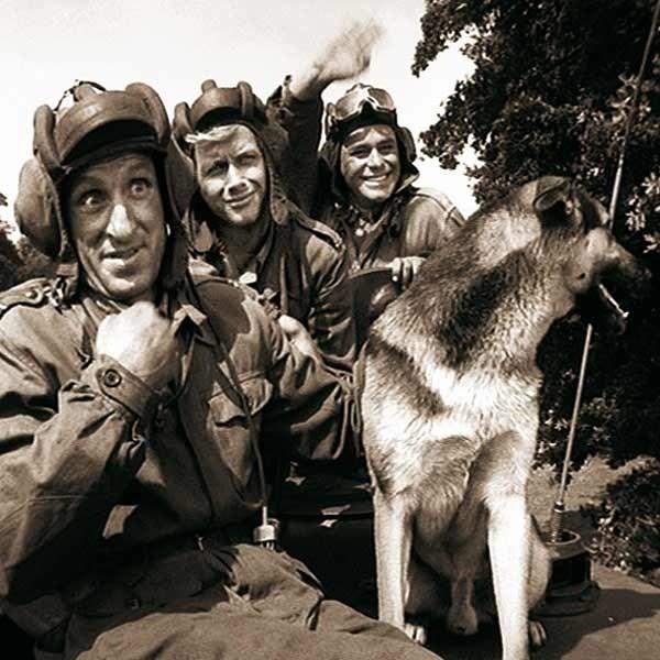 Czterej pancerni i Szarik - najwięksi kombatanci IV RP