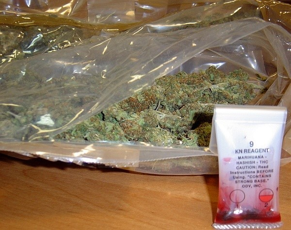 Specjalne testy szybko pokazały, że susz zawiera sporą ilość THC