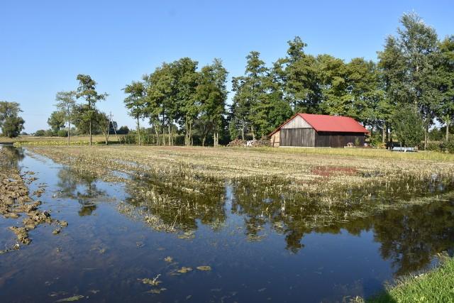 Mimo, że od obfitych opadów deszczu, które nawiedziły niewielką miejscowość pod Dąbrową Tarnowską minęło już kilka tygodni, woda wciąż stoi na polach i łąkach, podchodzi po posesję domów, wylewa na część wąskich dróg, prowadzących przez wieś