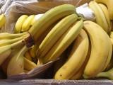 Łódź. Pająk w bananach ugryzł klientkę w markecie. Sklep wyjaśnia okoliczności incydentu