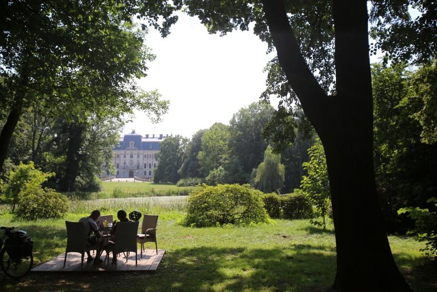 7 atrakcji turystycznych Pszczyny. Co warto zobaczyć oprócz zamku i żubrów?