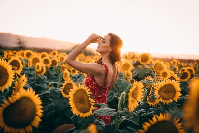 Najpiękniejsze zdjęcia Instagramerów wśród słoneczników. Przejdź do galerii i zobacz!