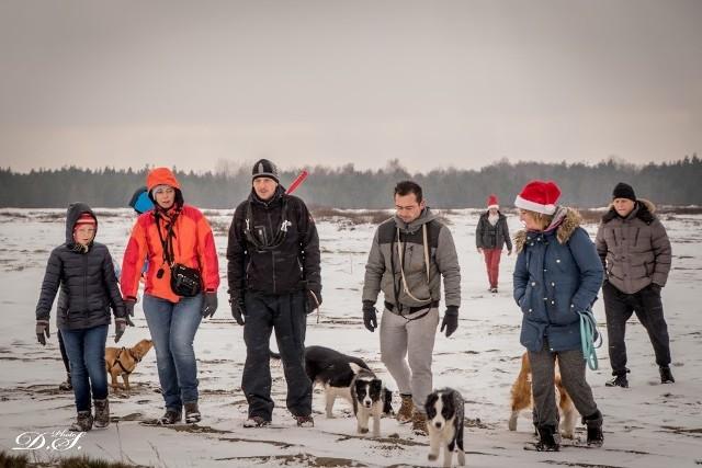 Psi spacer na Pustyni Błędowskiej z mikołajkowymi akcentami