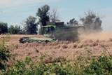 Rolnicy są w tragicznej sytuacji. W czasie pandemii nie otrzymali takiej pomocy jak przedsiębiorcy