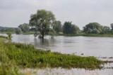 Mocno padało we Wrocławiu i okolicach. Poziom wody w rzekach rośnie