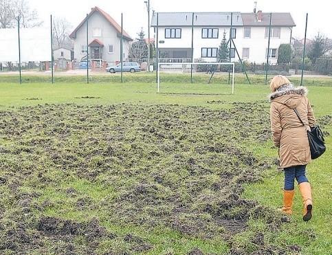 Dziki zniszczyły murawę na osiedlowym boisku. – Stale zajmujemy tereny mieszkalne tych zwierząt, a one siędostosowują do nowych warunków, szukają pożywienia – mówi Ryszard Czeraszkiewicz.