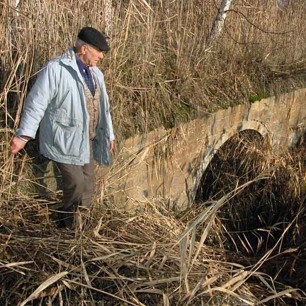 Kiedy zaniechano melioracji rzeczki Żupawki, ta od nowa zarosła sitowiem i miliony złotych  zostały zmarnowane.
