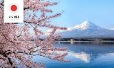 Projekt Mirai. Japonia - co musisz wiedzieć przed zaplanowaniem wycieczki do Kraju Kwitnącej Wiśni?