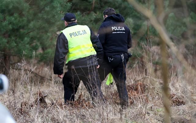 Kobieta została zamordowana i zakopana w lesie. Jej ciało zostało znalezione 27 lutego w lesie w Zielonej Górze. O morderstwo podejrzewana jest osoba, którą ofiara znała.Jak udało się nam nieoficjalnie ustalić, ofiara to zaginiona kobieta, mieszkanka miejscowości z okolic Zielonej Góry. Zaginęła w nocy 15 stycznia. Miała wtedy wyjść z domu i od tego czasu nikt jej już nie widział. Aż do 27 lutego.  Wtedy na ciało w lesie natknęły się osoby pracujące przy wycince drzew. Z ziemi wystawały stopy. Wiadomo, że doszło do zabójstwa. Kobieta została zamordowana, a sprawca zakopał ją w lesie. Ofiara osierociła czworo dzieci. Udało się nam ustalić, że osoba podejrzewana o morderstwo to znajomy ofiary. To właśnie jego auto mieli śledczy ściągać do porównania śladów w lesie. – Prokurator rejonowy przekazał biegłym ślady zabezpieczone na miejscu odnalezienia ciała. Czekamy na ich ekspertyzę. Więcej informacji dla dobra śledztwa nie możemy zdradzić – mówi prokurator Zbigniew Fąfera, rzecznik zielonogórskiej prokuratury okręgowej. Zobacz też: Poznała go w sieci. Policja ujęła podejrzanego o morderstwo 18-latki