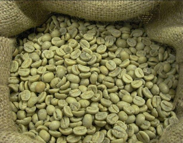 Zielona kawa a odchudzanie. OPINIE Jakie właściwości ma zielona kawa i czy pomaga w odchudzaniu