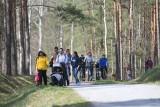 Tłumy spacerowiczów na Geościeżce Dawna Kopalnia Babina- Łuk Mużakowa w Łęknicy nieopodal Żar