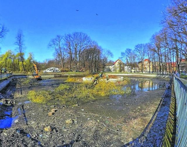Park Centralny został ogołocony, brak ponad dwustu drzew widać na każdym kroku. Na zdjęciu miejsce po wyciętych wierzbach