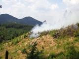 Wielki pożar w Rudawach Janowickich. Spłonęło 1,5 hektara lasu (ZDJĘCIA)