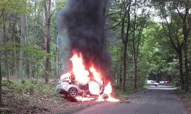 Po uderzeniu w drzewo policyjna kia stanęła w płomieniach i doszczętnie spłonęła.