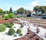 NOWINY PRZEPYTUJĄ KANDYDATÓW NA PREZYDENTA RZESZOWA: Jak zadbają o zieleń w mieście?