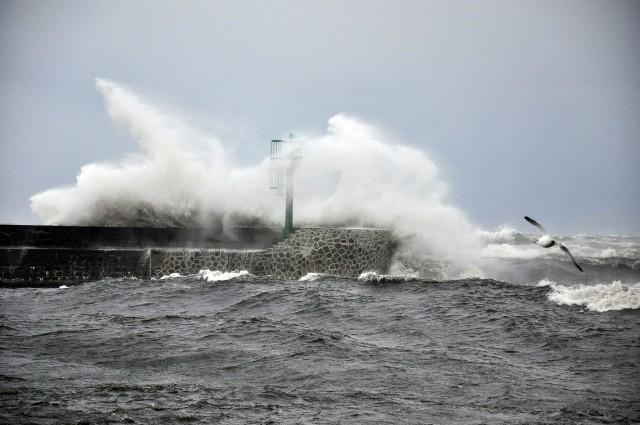 IMGW ostrzega przed silnym  wiatrem od poniedziałkowego wieczoru do wtorku rano