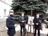 Jak głosowano w Łodzi na program zapobiegania bezdomności zwierząt?