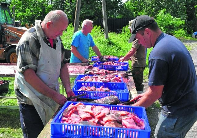 Organizatorzy każdego roku muszą obrobić 1,5 tony karpia, aby było gotowe na lokalne święto.