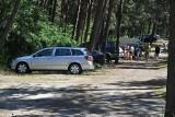 Zakaz wstępu do lasu. Od poniedziałku 20.04 zmiany. Co z parkowaniem na leśnych parkingach?