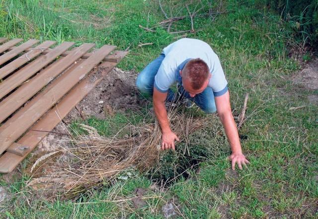 Syna pana Marcina wpadł do dołu, który wykopały bobry. Pojawiły się tutaj wraz z powodzią w 2010 roku