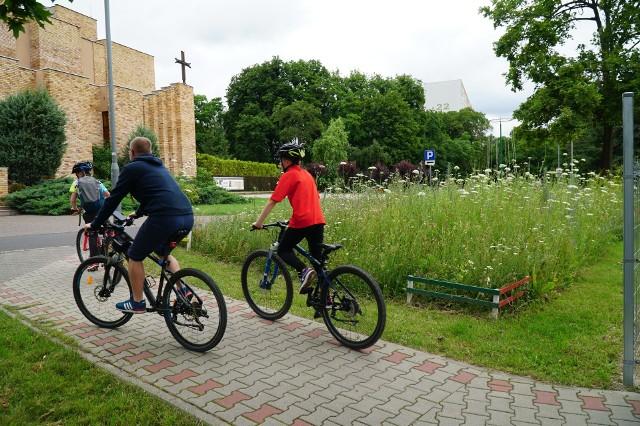 Łąki kwietne na poznańskim Piątkowie. Powstało ich już kilka między blokami, ale w przyszłości kwietnych dywanów ma być więcej. Zobacz, jak się prezentują. Kolejne zdjęcie -->