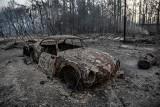 Grecja zmaga się z morderczym ogniem. Ewakuują ludzi, którzy schronili się na plaży i ratują narodowe skarby (WIDEO)